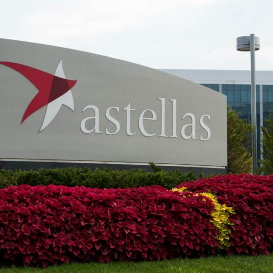 Anaeropharma Science and Astellas Pharma Collaborates to Develop Novel Anti-Tumor Drugs Using i-DPS Technology