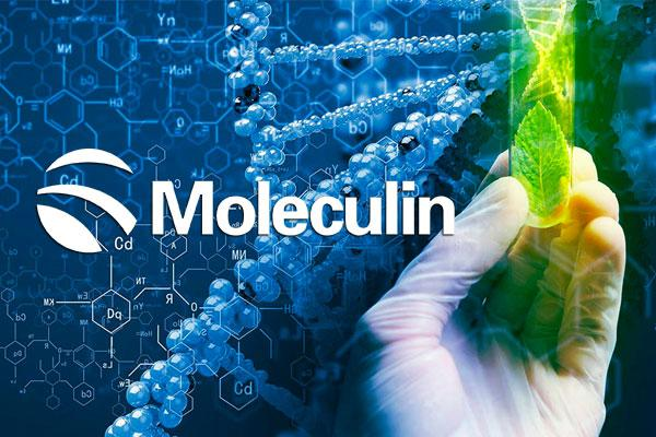 Moleculin Reports Dosing of Novel Brain Cancer Drug WP1066 in P-I trial for the treatment of Brain Tumor