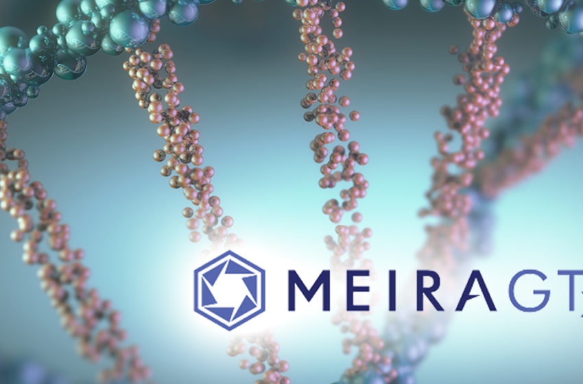 MeiraGTx Acquires Vector Neurosciences to Strengthen its Neurology Portfolio