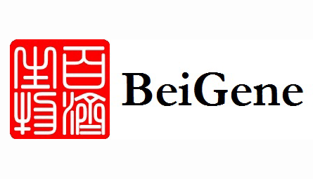 Beigene Signs Exclusive License and Development Agreement with Zymeworks (ZW)