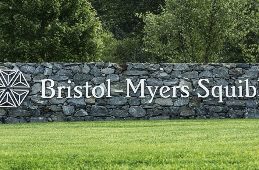 Bristol-Myers (BMS) Reports Results of Opdivo (nivolumab) + Yervoy (ipilimumab) in P-II CheckMate -650 trial for Metastatic Castration-Resistant Prostate Cancer (mCRPC)