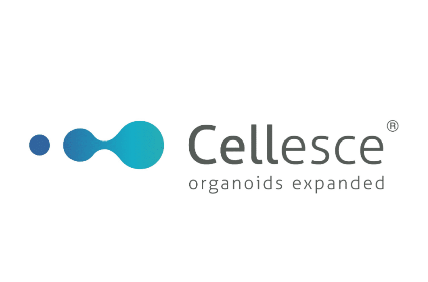 Cellesce Signs a License Agreement with Hubrecht Organoid Technology (HUB) for the Expansion of Organoids