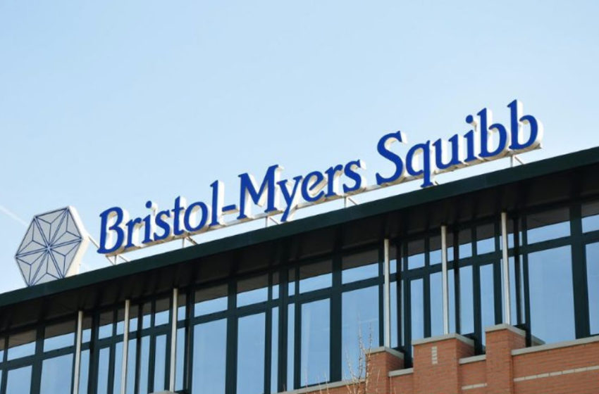 BMS Reports Pooled Five Year Results of Opdivo (nivolumab) in Two P-III Studies for Advanced Non-Small Cell Lung Cancer