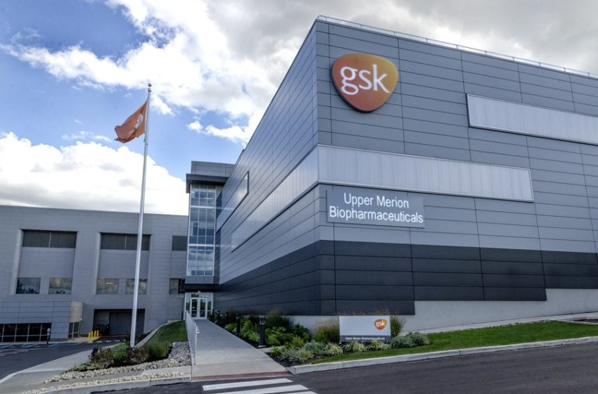 GSK's Zejula (niraparib) Receives FDA's Approval for Late-line Treatment in Women with Recurrent Ovarian Cancer