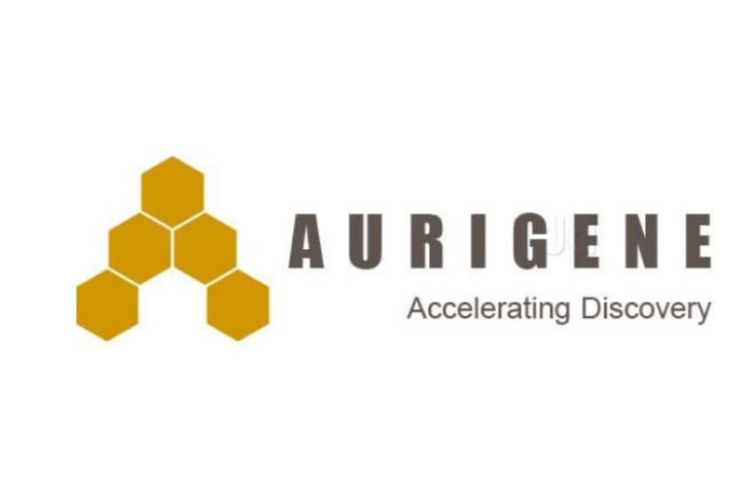 Curis Amends its Existing Collaboration with Aurigene for the Development and Commercialization of CA-170
