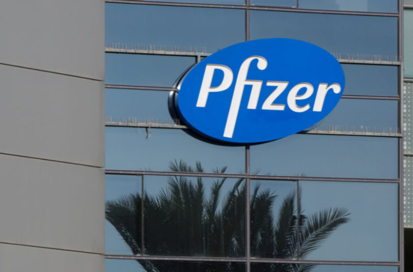 Pfizer's Vyndaqel (tafamidis, 61mg) Receives EC's Approval as the First Therapy to Treat Transthyretin Amyloid Cardiomyopathy in the EU