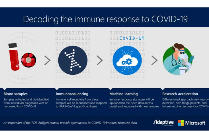 Microsoft and Adaptive Biotechnologies Expand Their Collaboration for Mapping the Immune Response to COVID-19