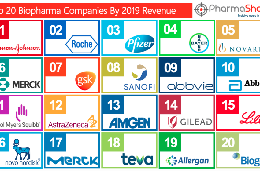 Top 20 BioPharma Companies based on 2019 Total Revenue
