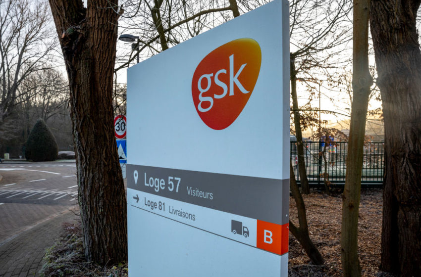 GSK's Belantamab Mafodotin Receives the US FDA Advisory Committee's Recommendation to Treat Relapsed/Refractory Multiple Myeloma