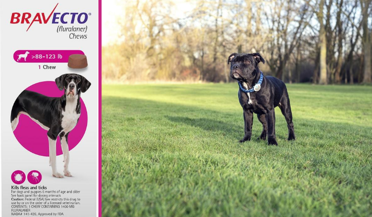 Merck Animal Health Receives the US FDA's Approval for Bravecto (fluralaner) Monthly Chews to Protect Dogs and Puppies Against Fleas and Ticks