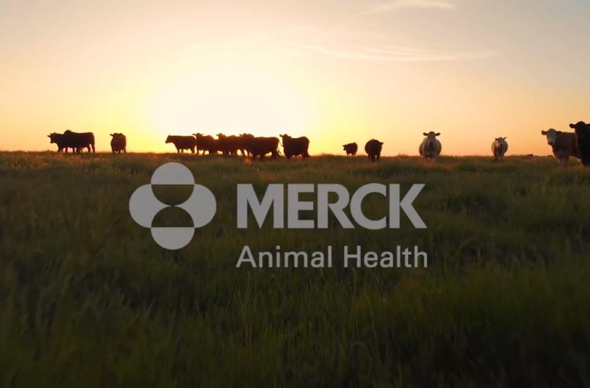 Merck Animal Health to Acquire Rights to Sentinel Brand of Combination Parasiticides for Companion Animals in the US for $400M