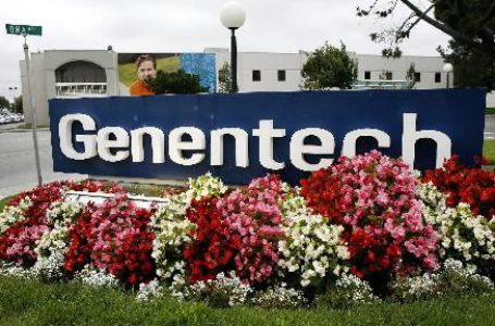 Genentech and AC Immune's Semorinemab Flounders in P-II TAURIEL Study for Early Alzheimer's Disease