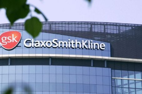 GSK's Zejula (niraparib) Receives EC's Approval as a Treatment in Advanced Ovarian Cancer