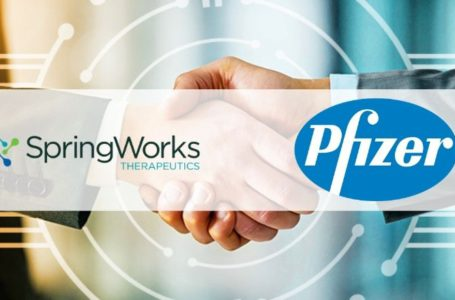 Pfizer Signs an Agreement with SpringWorks to Evaluate Nirogacestat + PF‐06863135 for R/R Multiple Myeloma