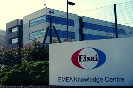 Eisai Reports Results of Lenvima (lenvatinib) + Everolimus in P-II 218 Study for Advanced Renal Cell Carcinoma
