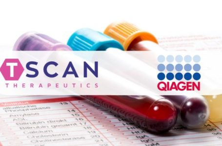 Qiagen Collaborate with TScan to Develop T Cell-Based COVID-19 Test