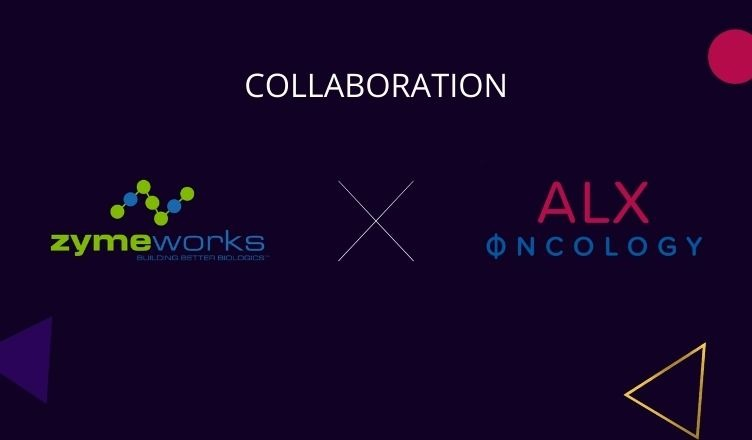 Zymeworks and ALX Oncology Collaborate to Evaluate Zanidatamab + ALX148 for Advanced HER2‑Expressing Breast Cancer