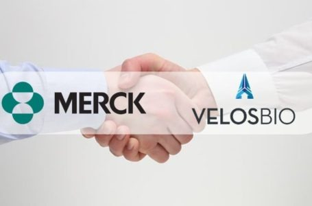 Merck to Acquire VelosBio for $2.75B