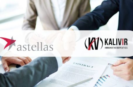 Astellas Collaborates with KaliVir to Develop and Commercialize VET2-L2