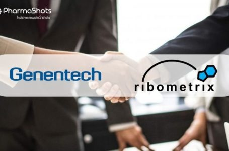 Genentech Signs ~$1B Pact with Ribometrix to Develop RNA-Targeted Small Molecule Therapies