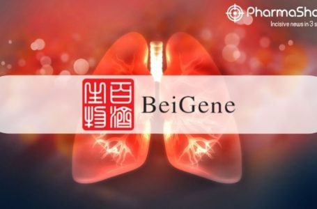 BeiGene's Tislelizumab (BGB-A317) + CT Receive NMPA's Approval as 1L Therapy for Advanced Squamous NSCLC