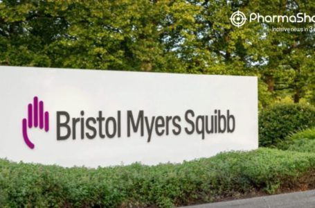 BMS' Opdivo + Yervoy and Onureg Receive EC's CHMP Positive Opinion for MPM and AML