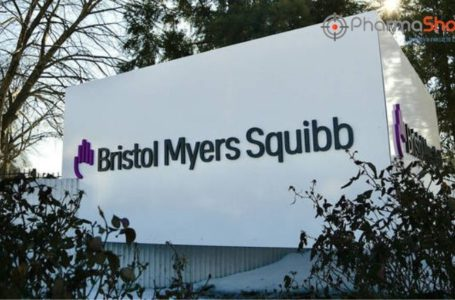 BMS Reports the US FDA's Acceptance of Opdivo's sBLA for Priority Review to Treat Muscle Invasive Urothelial Carcinoma
