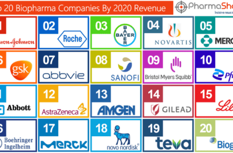 Top 20 BioPharma Companies based on 2020 Total Revenue