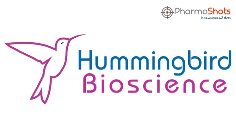 Hummingbird Collaborates with Novogene to Expand Precision Therapy Testing for NRG1-Fusion Driven Cancers in China